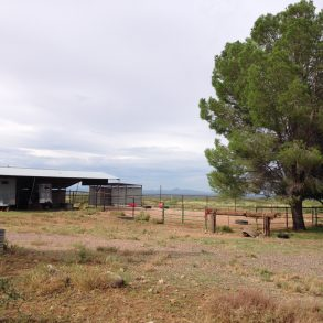 SOLD! Leslie Canyon Ranch