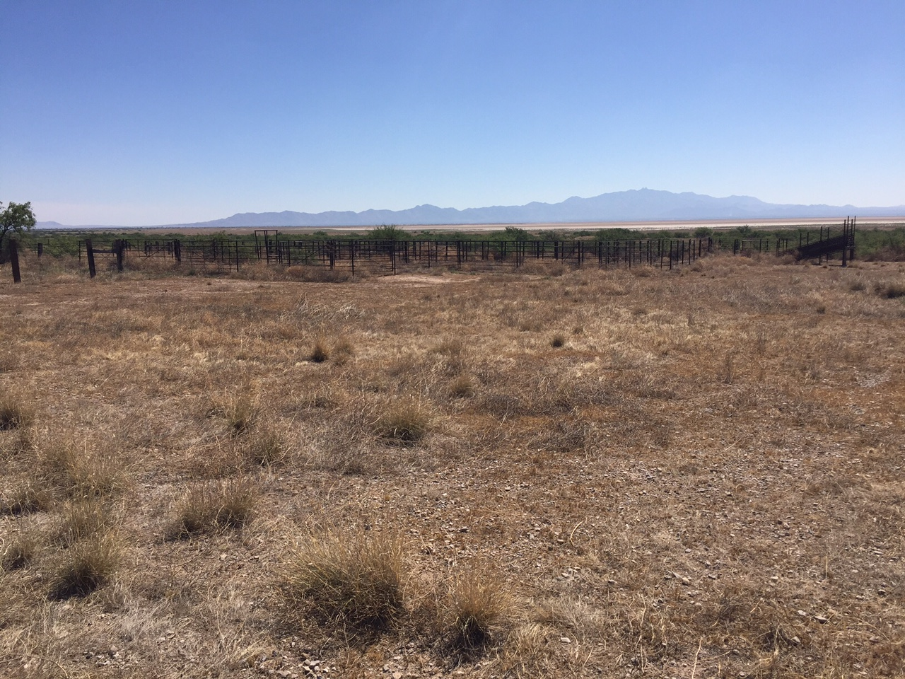 Cochise County Ranch