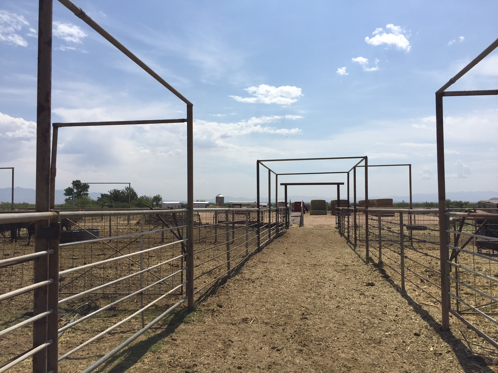 Alley in Cow Pens