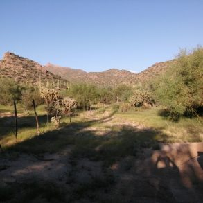 Main Corral Water Lot