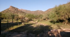 Price Reduced! Vaquero Ranch- (Owner May Finance)