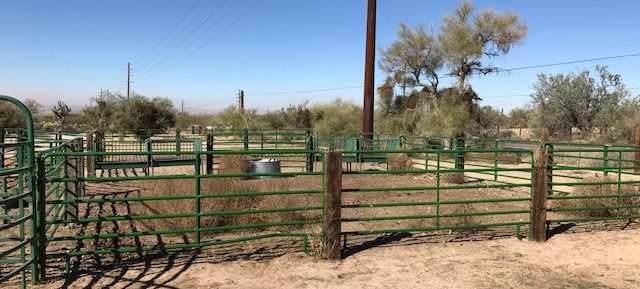 Under Contract!- Cattleman Ranch