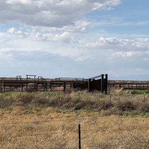 New Listing!- Cochise County Irrigated Cattle Operation