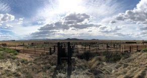 Sold! Cochise County Irrigated Cattle Operation