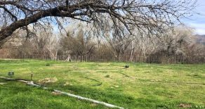 Sold! Double Check Natural Beef Irrigated Ranch