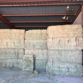 New!  Willcox Farm, House, Feed Pens and Meat Packing Plant